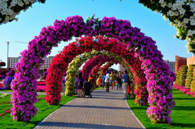 miracle-garden--park-tsvetov-v-dubai-4