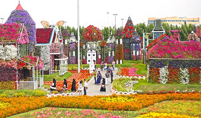 miracle-garden--park-tsvetov-v-dubai-6