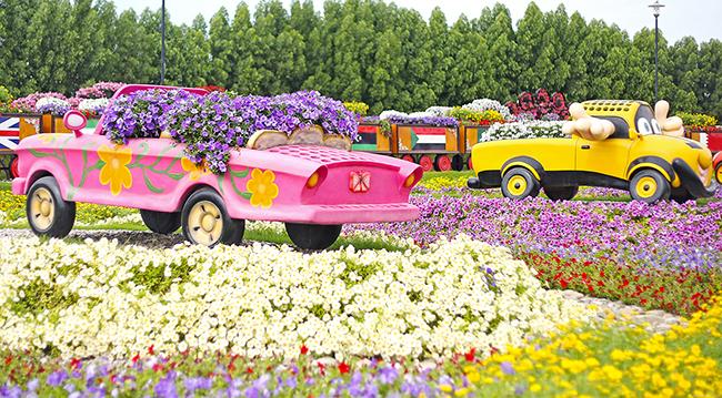 miracle-garden-park-tsvetov-v-dubai-9