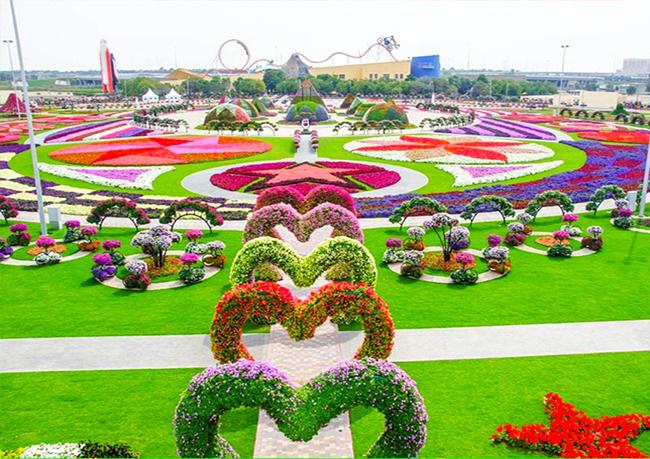 miracle-garden--park-tsvetov-v-dubai_cover