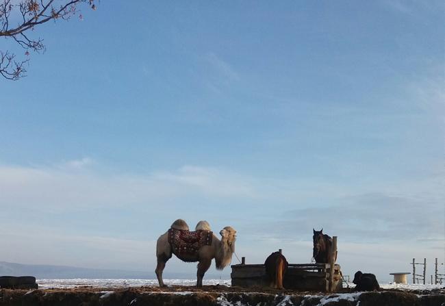 medovyye-vodopady-zimoy-otdykhayem-v-kislovodske-02
