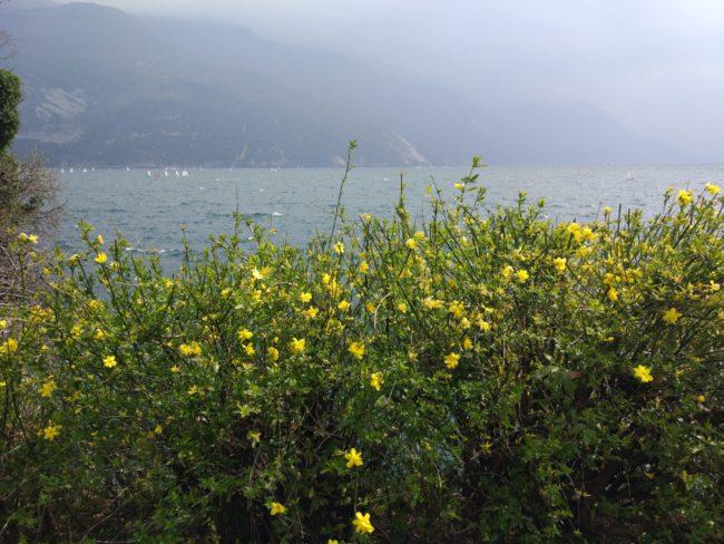 Озеро Гарда. Где остановиться. Что посмотреть