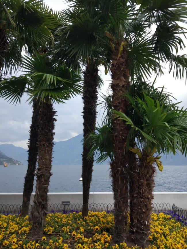 Озеро Гарда, Limone sul Garda